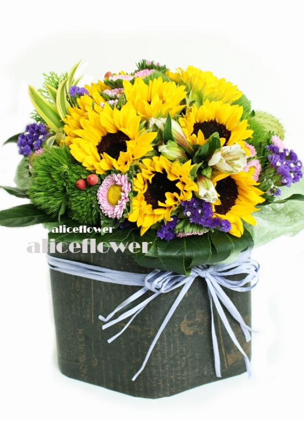 Bouquet in a Vox,Sunflower Sweetness