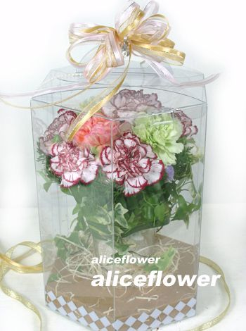 Bouquet in a Box,World Best Mother