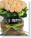 Midsummer Night´s Dream Flowers Vase,Orange perfume