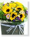 Sunflower-Sunflower Sweetness,Alice Florist Taipei Taiwan.