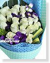 Imported Roses Bouquet-Blue Star,Alice Florist Taipei Taiwan.