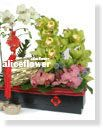 Lunar New Year Flower Arranged,Happy Chinese New Year