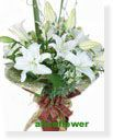 Bouquet in Vase-Page1Imprint of Green