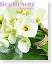 Spring Bouquets in Vase,White Lover Calla Lily