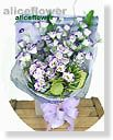 Eustoma-Page1Purple  attraction