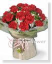 Mother´s Day imported Carnation-Page1Vital Mom