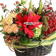 Christmas Gift-Warm season. X´mas Arranged Flowers is guaranteed to make their holiday both merry and bright-Alice Florist Taipei.