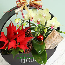 Christmas Gift-Song of the Shepherd. Holiday Gift is the perfect way to warm your special recipient´s heart this holiday season! -Alice Florist Taipei
